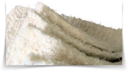 Beyaz Vatka